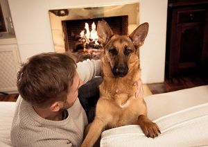 Fireplace safety with dog.